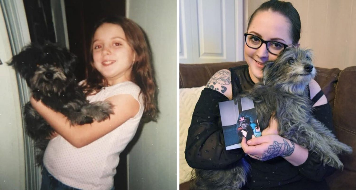 Woman Adopts Old Dog From Shelter, Finds Out It's Her Childhood Puppy