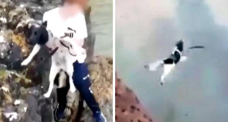 Police Identify Man Who Threw Dog Off Cliff