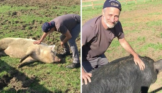 Tracy Stewart Created an Animal Sanctuary With Her Husband Jon