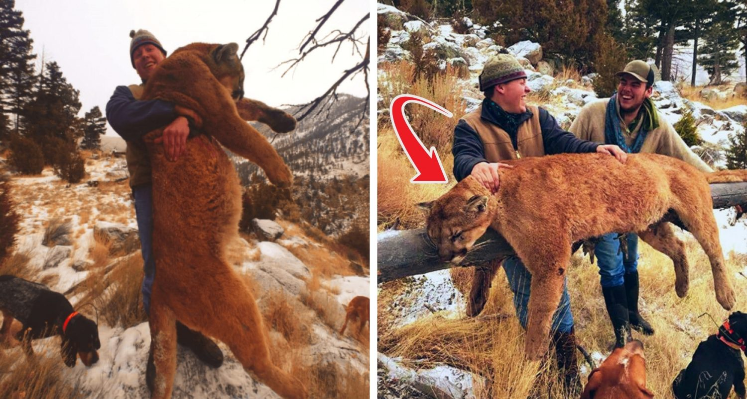 Three Hunters Who Illegally Killed Lion Caught After Bragging On Social Media