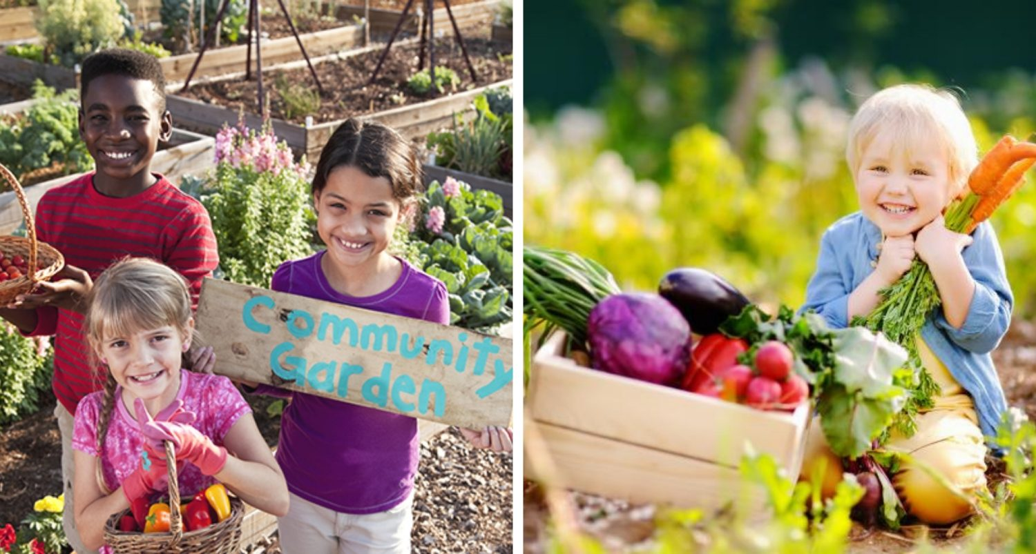 Should Kids Be Taught How To Grow Food As Part Of Their Schooling?