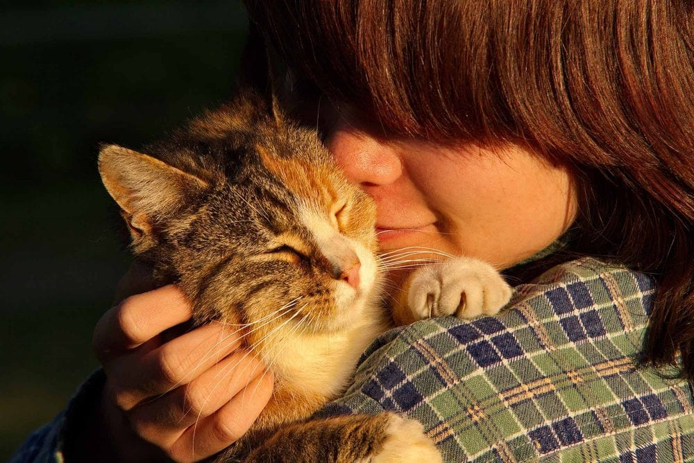 Reasons Why Losing a Pet Causes So Much Hurt