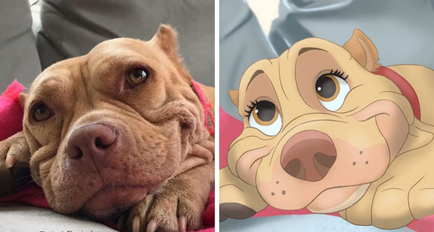 People Send Pictures Of Their Pets To This Artist, And She Disneyfies Them