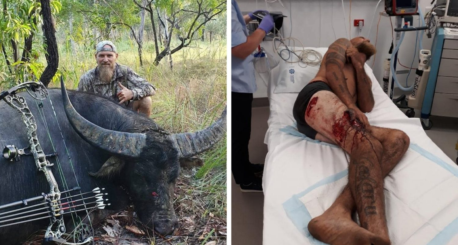 Dying Buffalo Gores Trophy Hunter Twice In Final Act Of Revenge