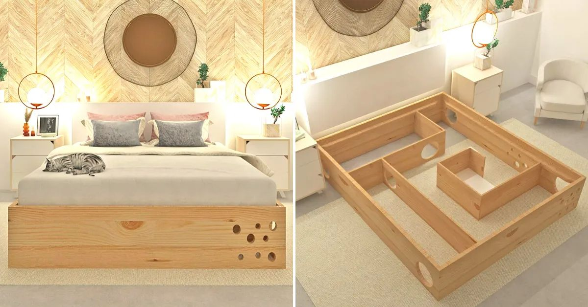 this company makes bed frames with hidden cat mazes inside for your feline friends