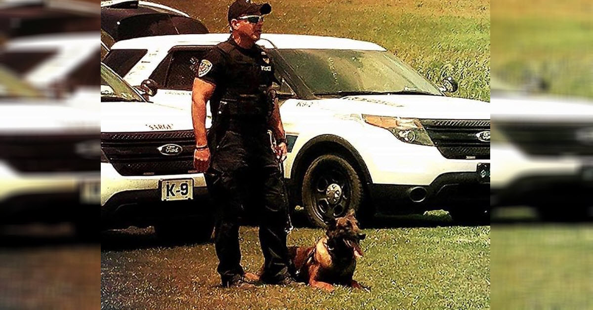 police dog falls down elevator shaft and dies while looking for burglary suspects