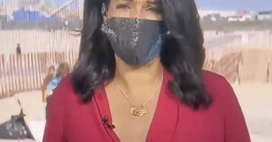 woman drops pants and urinates during tv reporter's live cross