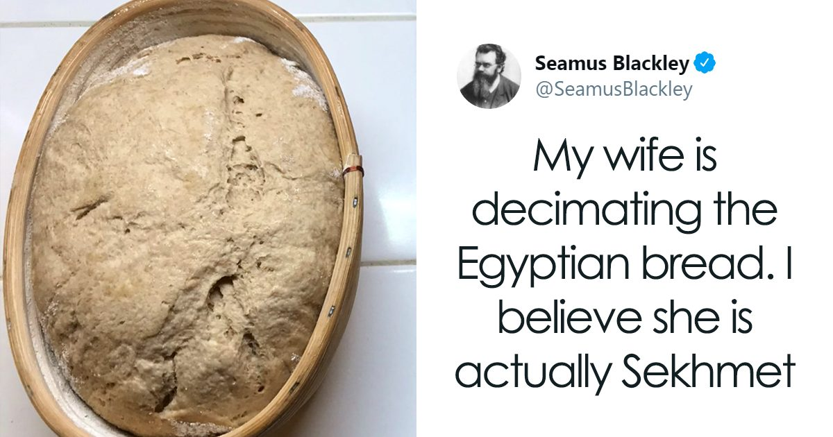 scientist bakes bread from 4,500-year-old yeast, says the flavor is unbelievable