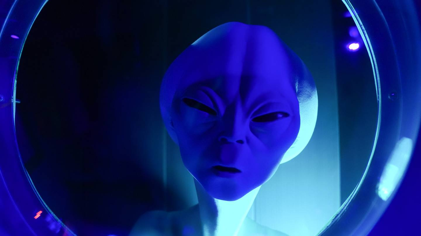 expert believes aliens don't visit earth because we're too stupid