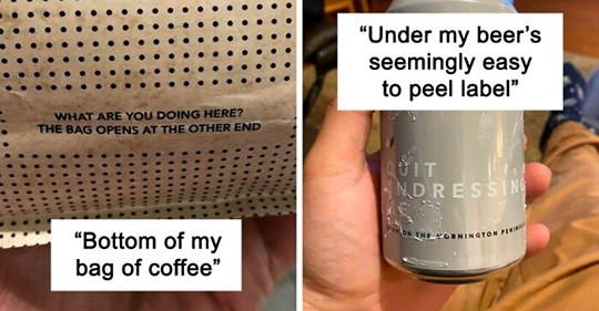 50 times people accidentally found a real-life easter egg