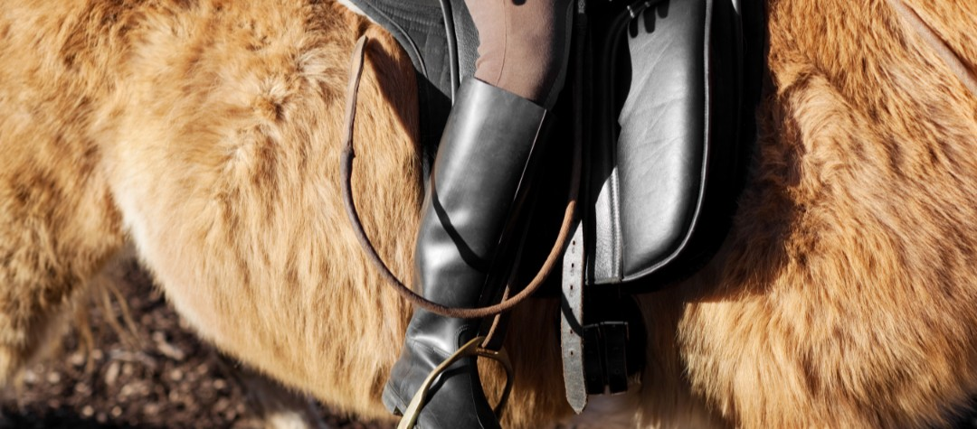 a beginner's guide to creating your perfect horse riding kit