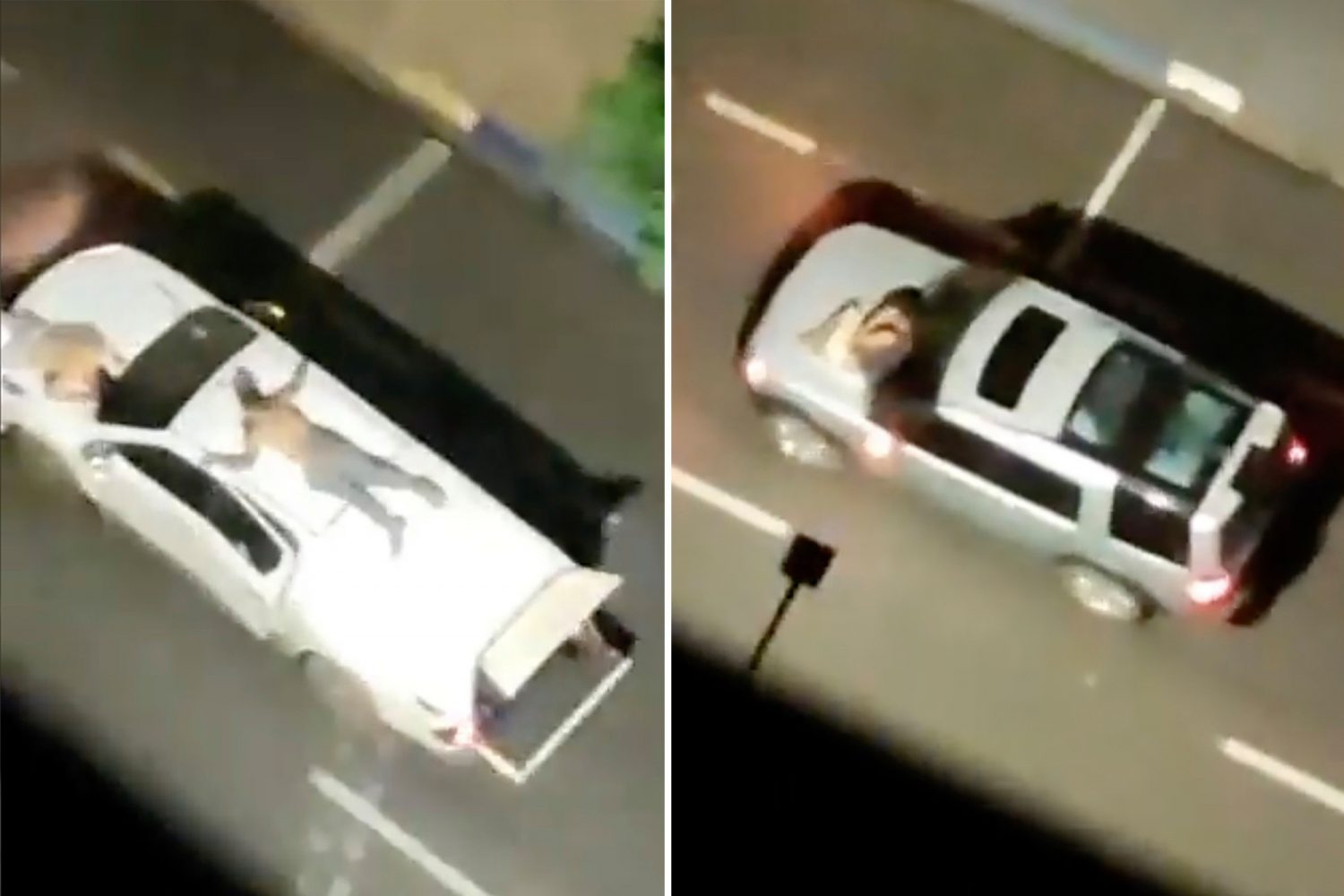 Hostages Used As Human Shields Tied To Car Roofs In Terrifying Bank Robbery Getaway