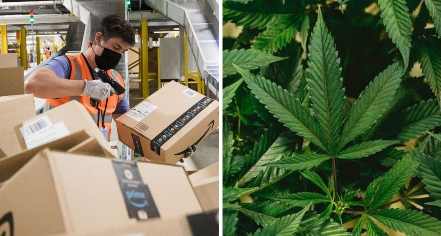 Amazon Says Workers And Applicants Fired Or Barred During Marijuana Screening Are Now Eligible For Employment