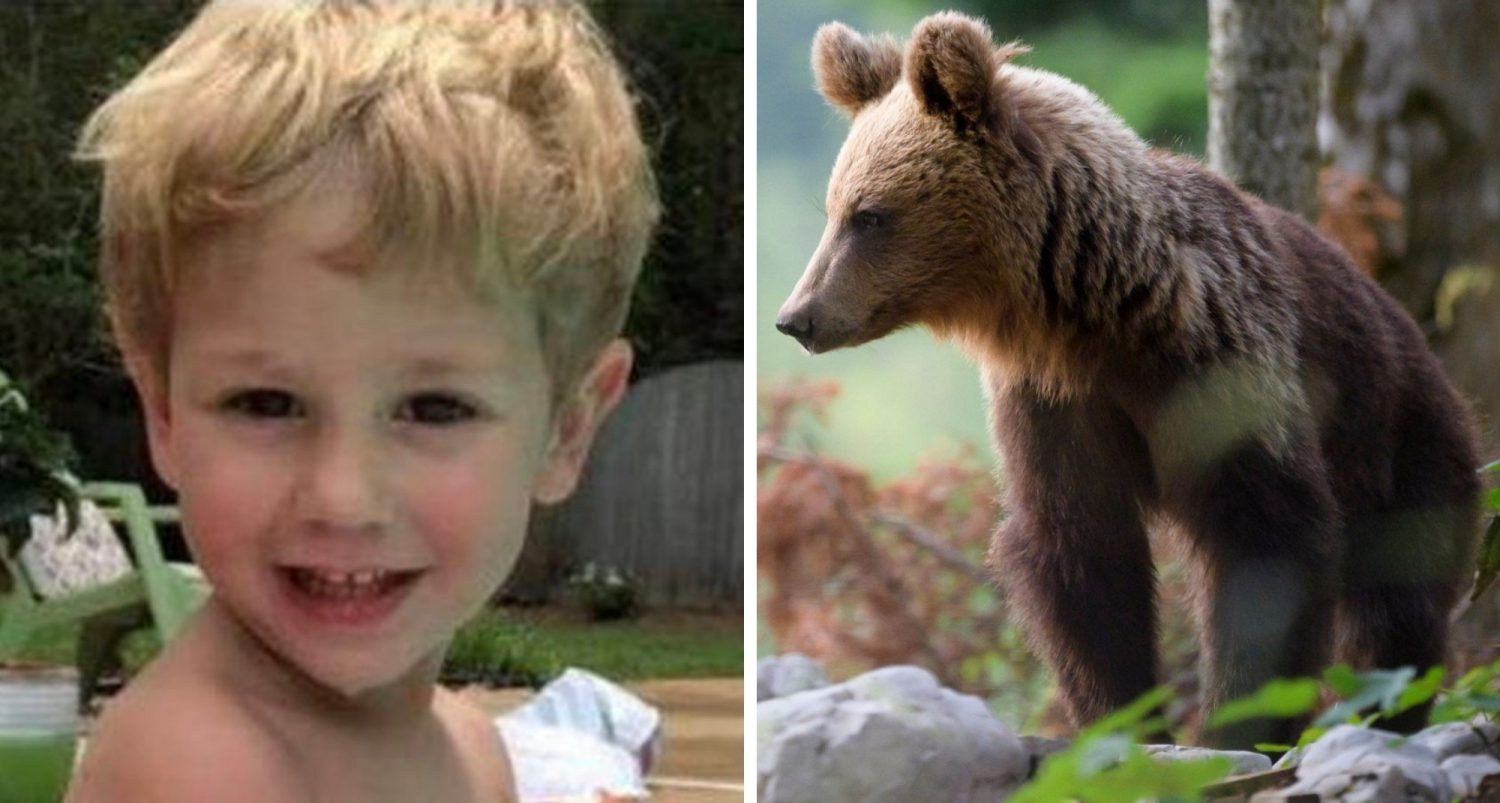 The 3-year-old Boy Who Survived 2 Freezing Nights Says That A Bear Helped Keep Him Warm