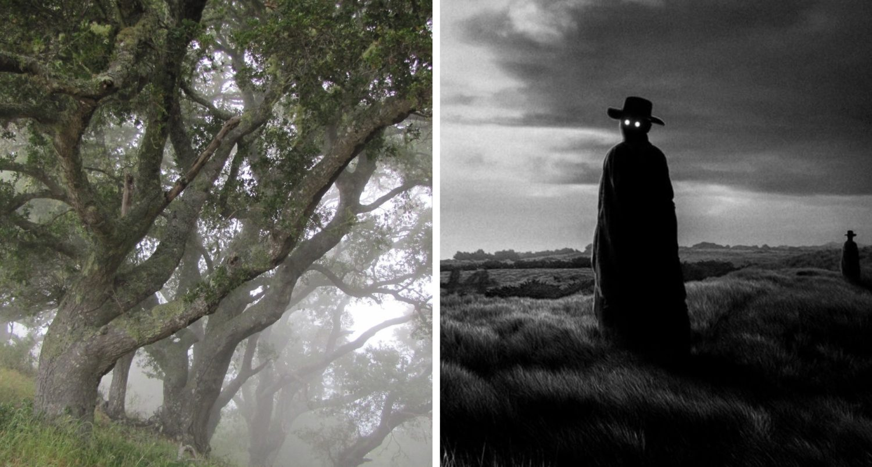 The Dark Watchers: Phantoms Guarding California's Big Sur